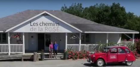 LES CHEMINS DE LA ROSE